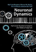 Neuronal Dynamics