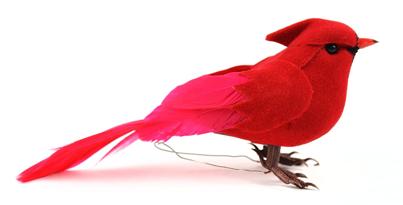 Touch of Nature 20113 Cardinal, 4-Inch