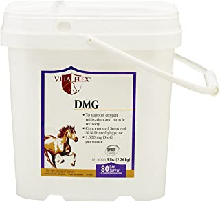 Vita Flex DMG, 80 Day Supply, 5 lbs