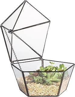 Best terrarium with lid Reviews
