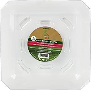 Plastec SQRO8 Square Recycled Plant Saucer, 8-Inch - SQR08
