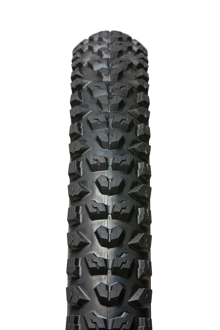 Panaracer Swoop Tire with Folding Bead