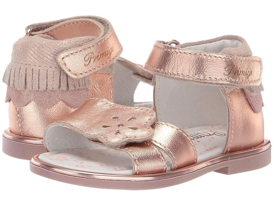 Primigi Kids PHD 34164 (Toddler) (Pink) Girls Shoes