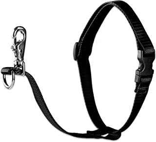 Lupine 3/4 Inch No Pull Harness for Small and Medium Dogs