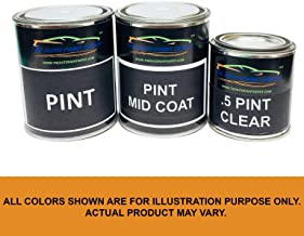 Auto Paint Depot Touch Up Paint for GMC Acadia,Canyon,Envoy,Savana,Sierra,Terrain,Topkick,Yukon-Black (matt) WA848/WA8555 (All Years, All Models) One Pint with Clear Coat
