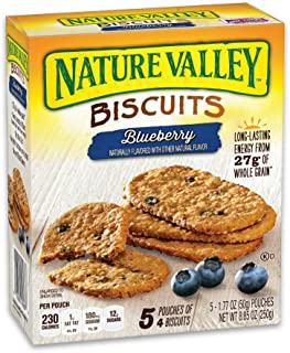 NAT VAL BKFST BSC Breakfast Biscuit, Blueberry, 8.85 Ounce (Pack of 1)