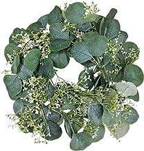 Best seeded eucalyptus plant Reviews
