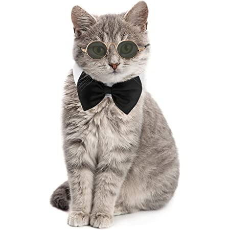 Small Pet Formal Accessory Formal Cat Cat Bow Tie Sage Cotton Bow Tie /& White Shirt Collar