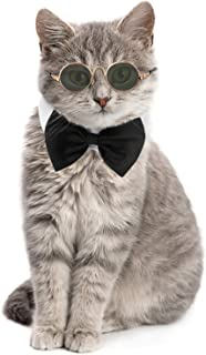 Best bow tie collars for cats Reviews