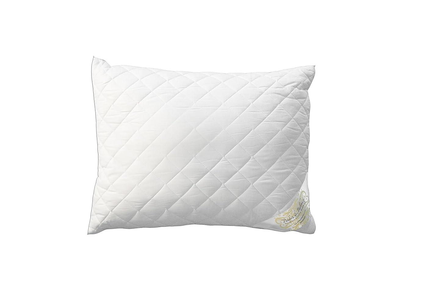 貢献する二十そこパンドラde Balthazar European Climarelle高級寝具低刺激性枕、アメリカ標準