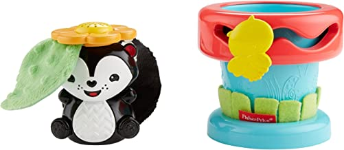 Fisher-Price Dfp91 Peek And Play Flower Pot