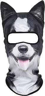 Best border collie mask Reviews