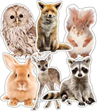 Carson Dellosa – Woodland Whimsy Animals Colorful Cut-Outs, Classroom Décor, 36 Pieces