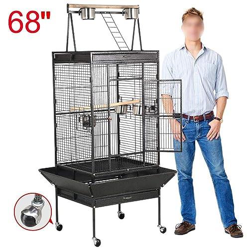 African Grey Bird Cage: Amazon com