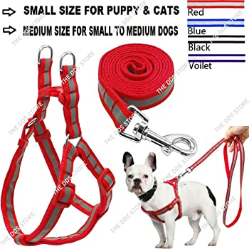 The DDS Store Nylon Reflective Dog Harness Leash Lead Set for Puppy (Puppy Small, Red)