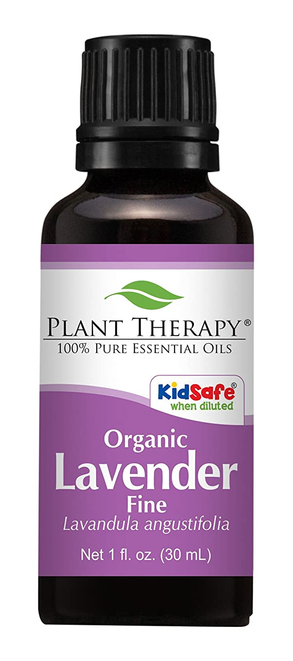 小間満足させる読みやすさ植物セラピーUSDA認定オーガニックラベンダーファインエッセンシャルオイル。 100%ピュア、希釈していない、治療グレード。 30mLの(1オンス)。