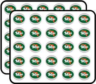 Miami Florida Green Orange Oval Vinyl City Town College University Sticker for Scrapbooking, Calendars, Arts, Kids DIY Crafts, Album, Bullet Journals 50 Pack