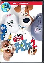 DVD Movies   Amazon com