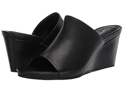 Seychelles Perky (Black Leather) Women