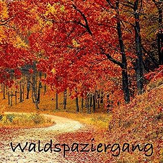 Waldspaziergang - Hängematte für die Seele     Naturgeräusche (ohne Musik) zur Entspannung von Körper und Geist              Autor:                                                                                                                                 Yella A. Deeken                               Sprecher:                                                                                                                                 N.N.                      Spieldauer: 7 Std. und 4 Min.     5 Bewertungen     Gesamt 5,0
