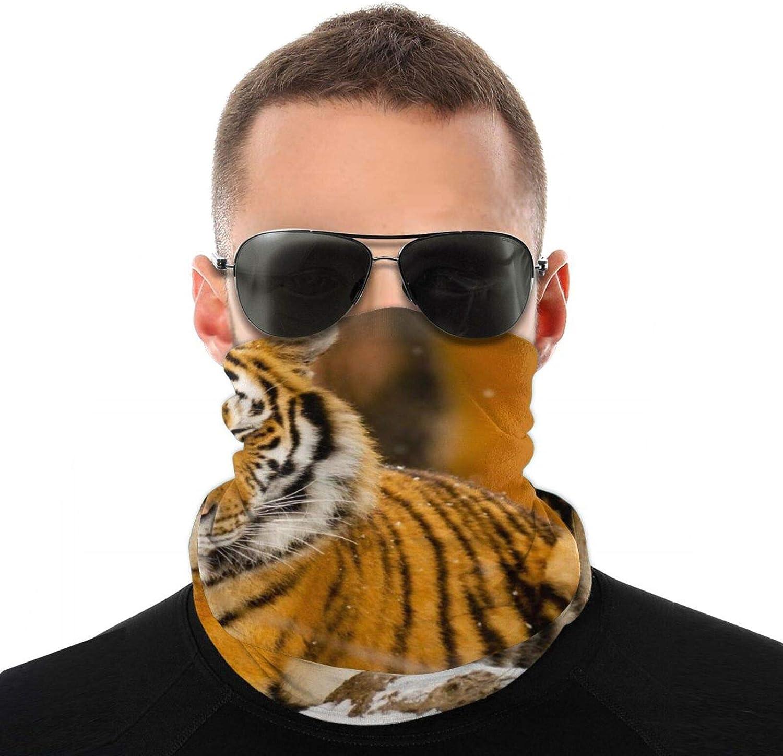 1Pcs Outdoor Magic Wild Tiger Headband Elastic Seamless Bandana Neck Gaiter Scarf Uv Resistant Sport Headwear For Yoga Hiking Riding Motorcycling
