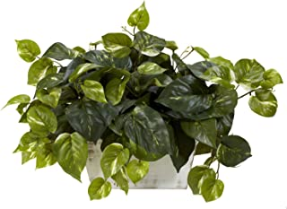 Nearly Natural 6713 Pothos with White Wash Planter Decorative Silk Plant, Green