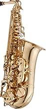 rs berkeley alto saxophone