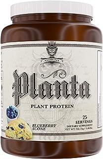 Amazon.com: Planta: Health & Household