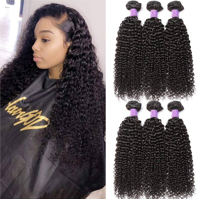 馬力穏やかなメイド女性のためのルーズカーリーブラックレースフロントウィッグ180%密度耐熱性繊維合成赤ちゃんの髪の毛
