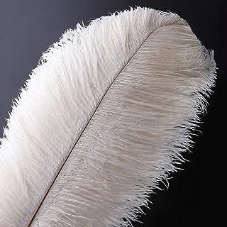 20pcs Natural Ostrich Feathers Plume - 10-12inch(25-30cm) for Wedding Centerpieces Home Decoration (25-30cm,White)