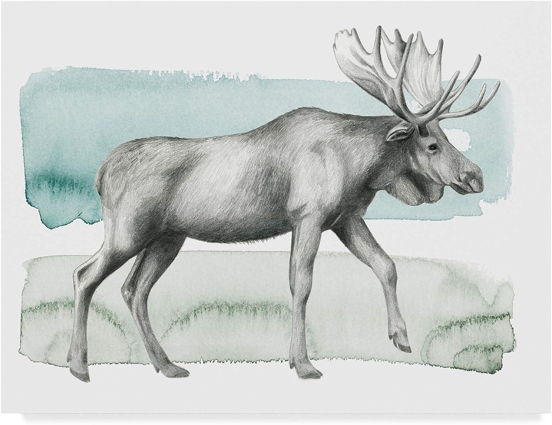 Trademark Fine Art Animal III by Grace Popp, 14x19
