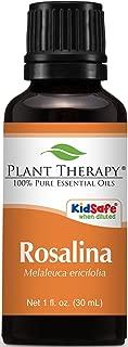 Plant Therapy Rosalina Essential Oil 30 mL (1 oz) 100% Pure, Undiluted, Therapeutic Grade