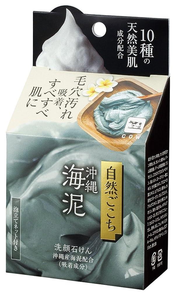 黒板魅力的であることへのアピールアルネ自然ごこち 沖縄海泥 洗顔石けん 80g