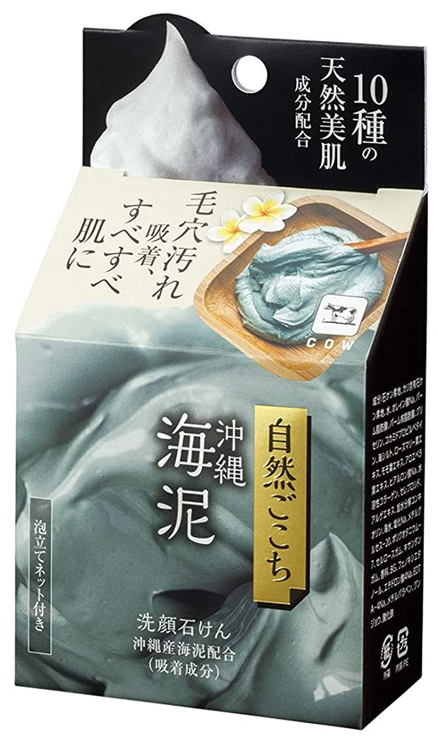 一般的に乗り出すアピール自然ごこち 沖縄海泥 洗顔石けん 80g
