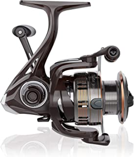 Cadence Elate Spinning Reel,10 + 1 BB,Ultra Light Fishing...