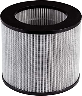 Bissell, 2801 Replacement High Efficiency and Carbon Filter MyAir Personal Air Purifier