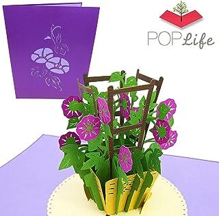 PopLife Cards Gloria matinal día de las madres tarjeta emergente para todas las ocasiones día de la madre, feliz cumpleaños, boda, simpatía, ponerse bien, tarjeta para sus jardineros, pliegues
