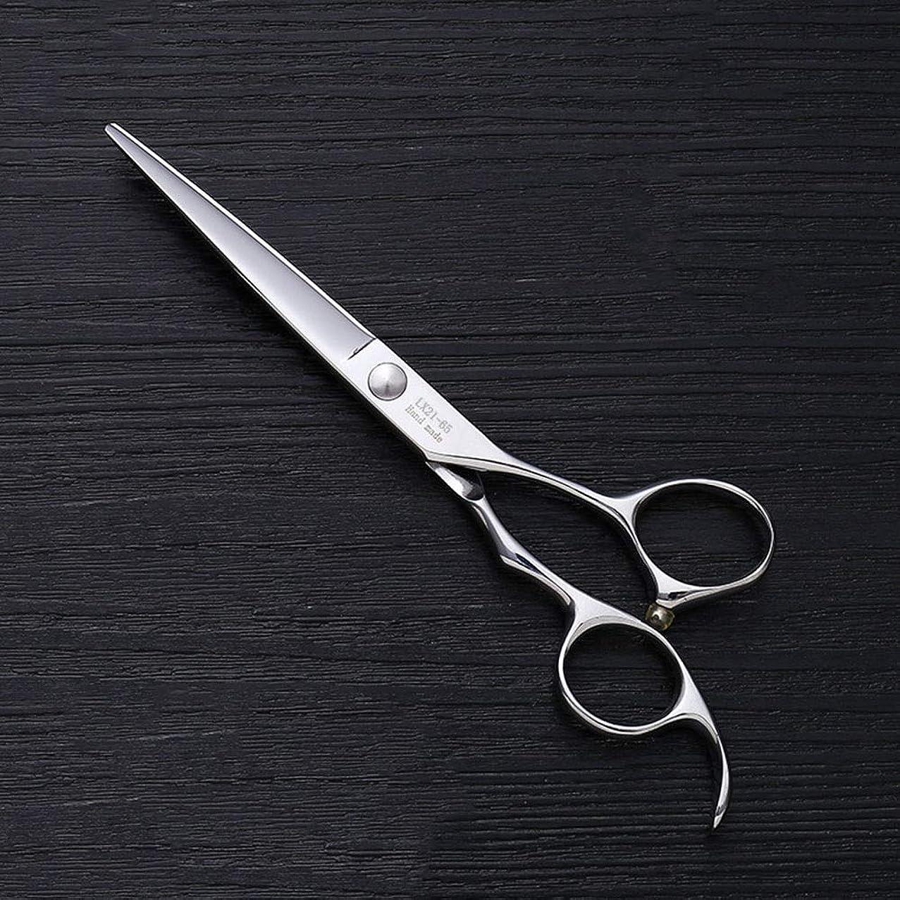 倍率アピールまろやかなHOTARUYiZi 散髪ハサミ カットバサミ セニング 散髪はさみ すきバサミ プロ ヘアカット カットシザー 品質保証 耐久性 美容院 ステンレス鋼 専門カット 6インチ 髪カット (色 : Silver)