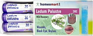 Homeopathy Ledum Palustre 30C Pills for Wounds, Black Eye, Bruises. Pack of 3, 240 pellets
