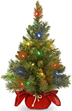 National Tree Company Pre-lit Artificial Mini Christmas Tree | Includes Multi-Color LED Lights and Cloth Bag Base | Majest...