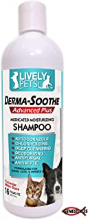 Lively Pets Medicated Dog Shampoo for Dogs and Cats | Ketoconazole, Chlorhexidine for Dry Skin, Yeast Infections, Dandruff, Mange, and Hot Spots - MAX Strength Antifungal Shampoo