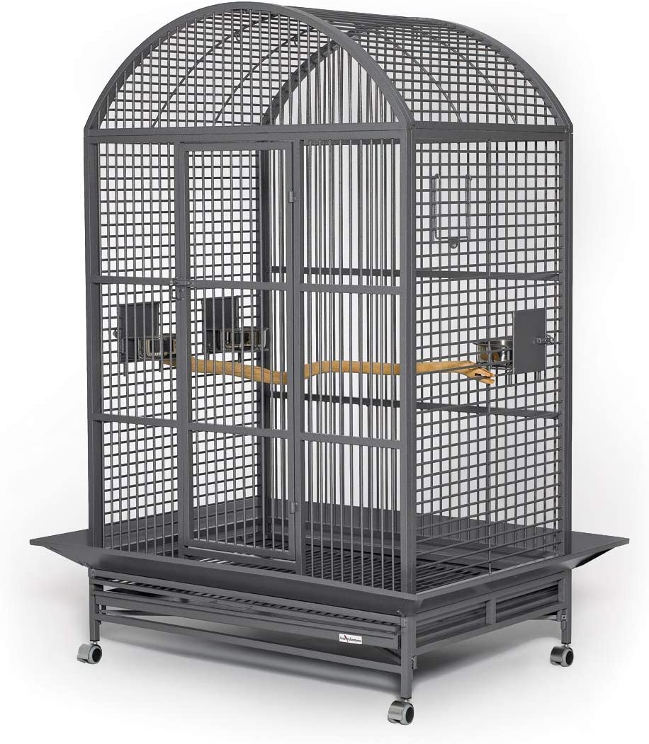 Grande Bird Cages Beautiful Max 74% OFF Dome low-pricing Top in Attractive Cage P