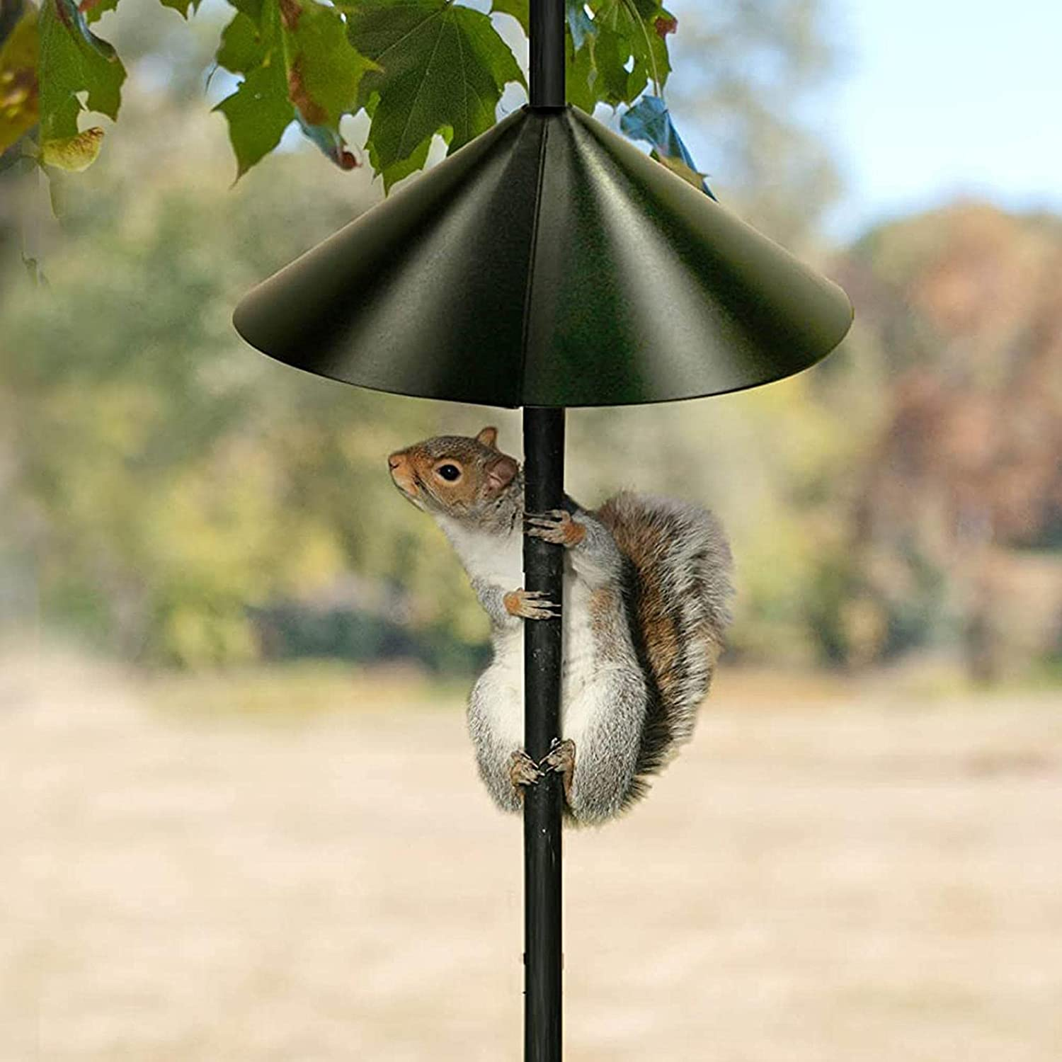 Outdoor Squirrel Proof Baffle Feeder High quality new Bird 2021new shipping free shipping