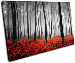 Bold Bloc Design - Stunning Forest Landscapes 135x90cm Single Canvas Art Print Box Framed Picture Wall Hanging - Hand Made...