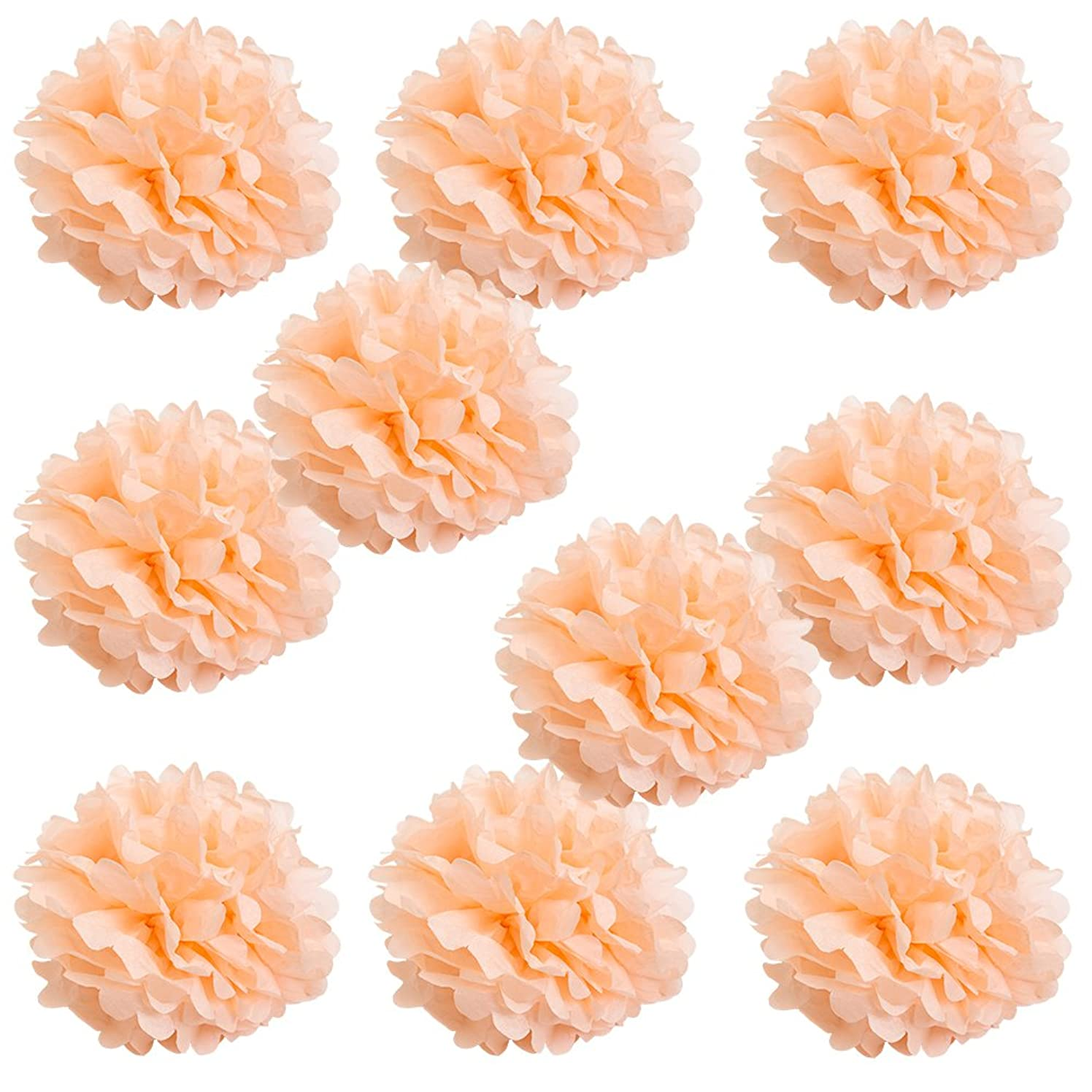 WYZworks Set of 10 - Peach 12