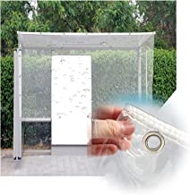 LIANGJUN Transparant Dekzeil Waterdicht Heavy Duty, Verdikking 0.3mm Duurzaam Polyvinylchloride Stofdoek, Stabiel Met Grom...