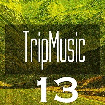 TripMusic 13