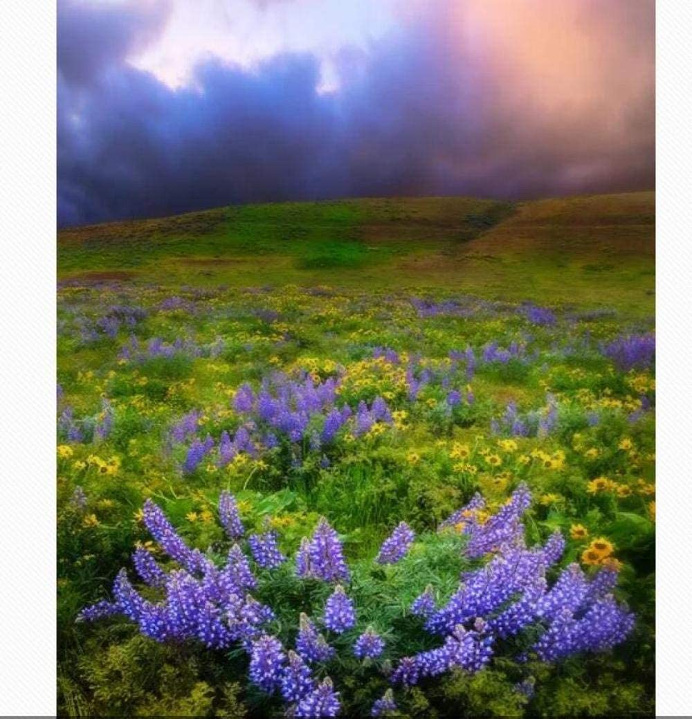 security Flower Grass and Cloud Landscape 5D Painting DIY Diamond Kits C Limited time for free shipping