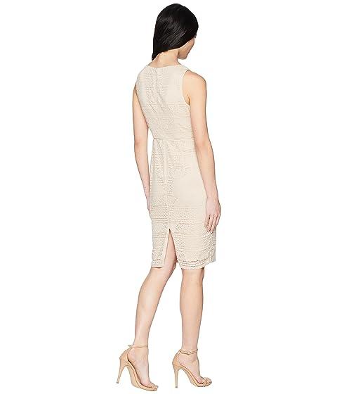 de natural de raya encaje vestido de vendimia Petite la Adrianna Papell 0qvx4wggyF