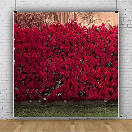7x10 FT Rose Vinyl Photography Background Backdrops,Vintage Warm Color Roses on Wood Well Being and Love Valentines Theme Modern Print Background Newborn Baby Portrait Photo Studio Photobooth Props